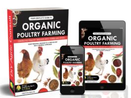 organic poultry farming eBook